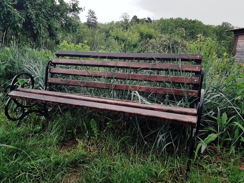 长木凳在有虹膜花的村庄庭院里 图库摄影