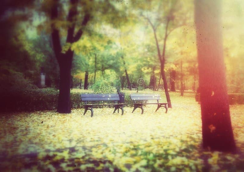 长木凳在秋天公园 库存照片
