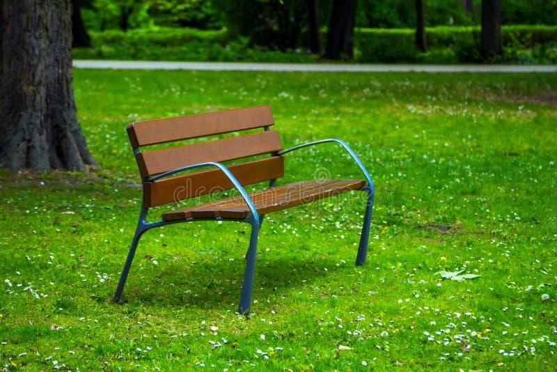 长木凳看法在春天公园,草甸的 图库摄影