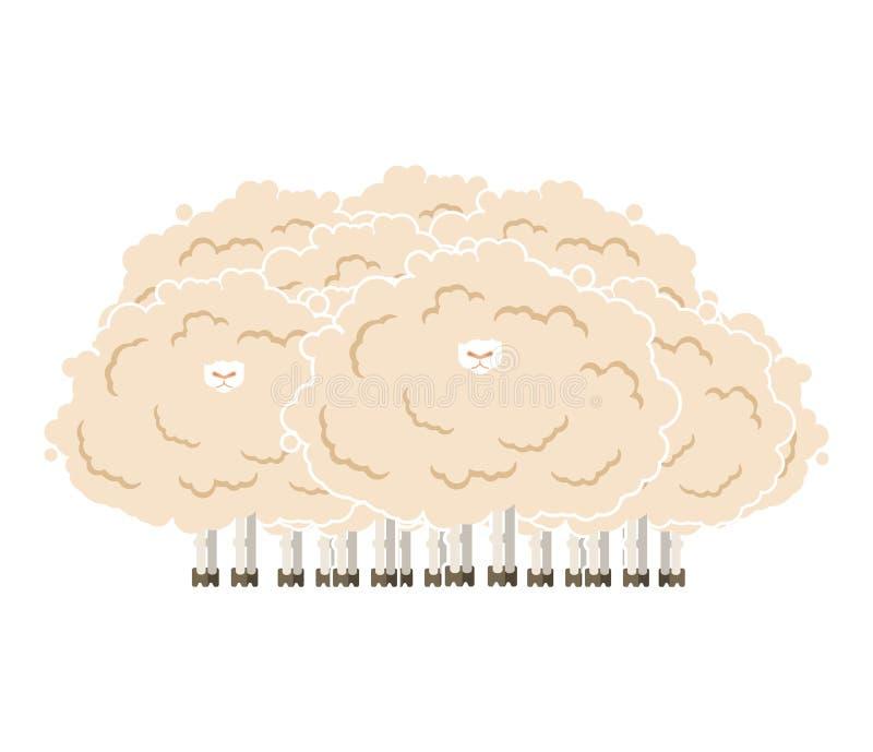 长毛的绵羊群 粗野的羊羔牧群 也corel凹道例证向量 库存例证