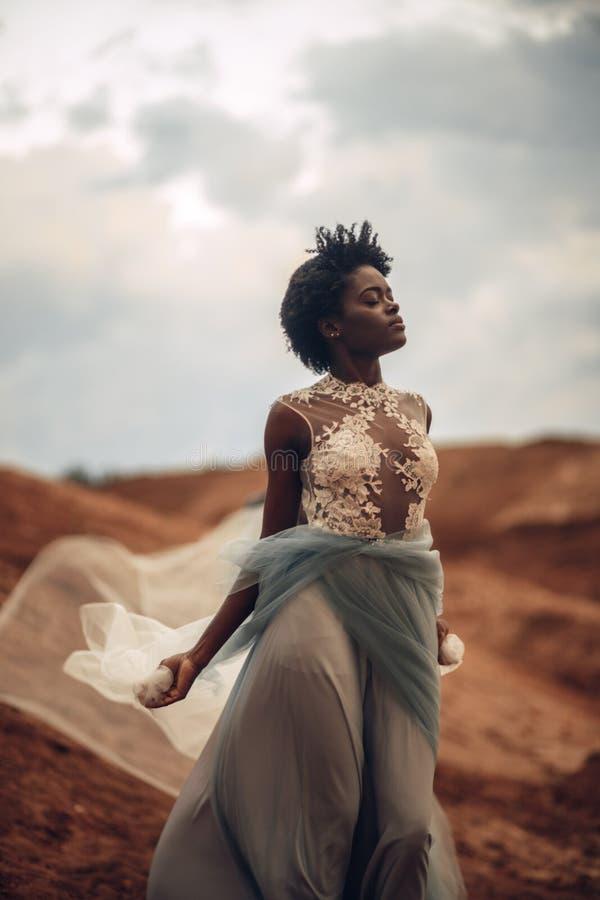 长的婚礼礼服和新娘面纱的黑人新娘在美好的风景背景站立  免版税图库摄影