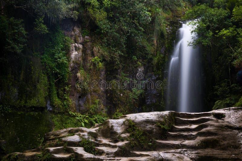 长的曝光射击了美丽的Kaiate瀑布在新西兰 免版税库存图片