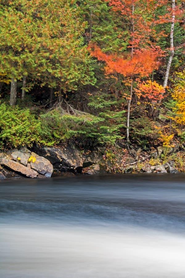 长的曝光弄脏在Oxtongue河的场面 免版税库存图片