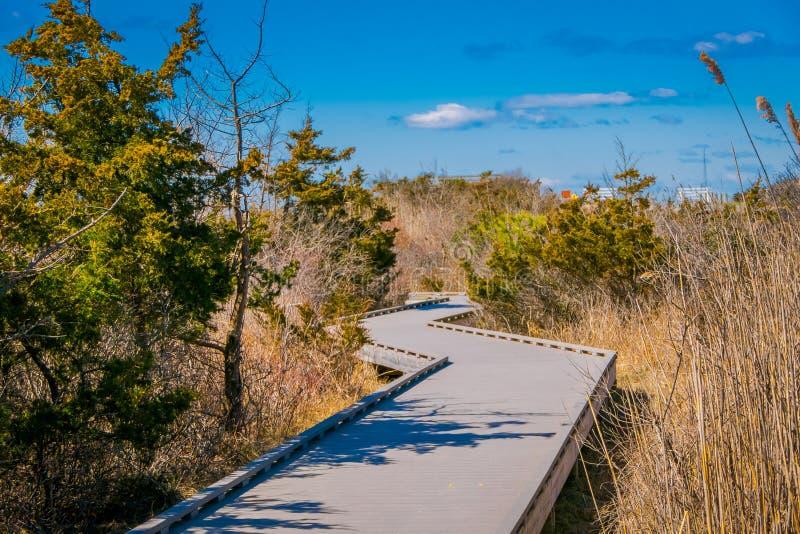 长的木桥室外看法在与蓝天的一个美好的晴天,在长岛 免版税库存照片