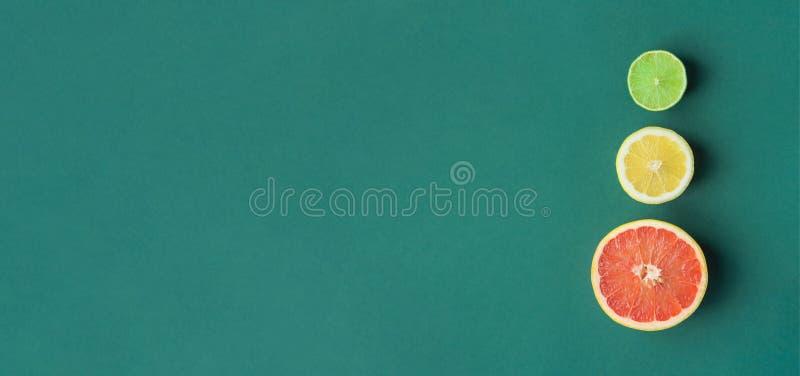 长的横幅切片在深绿背景的切成两半的有机柑橘水果葡萄柚柠檬石灰 中止光的模仿 库存图片
