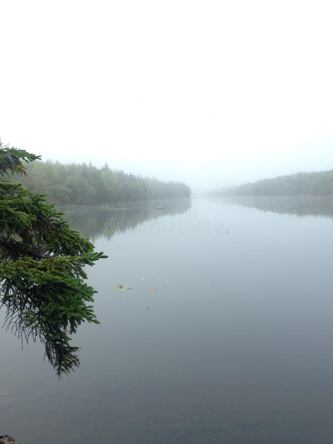 长的池塘 免版税图库摄影