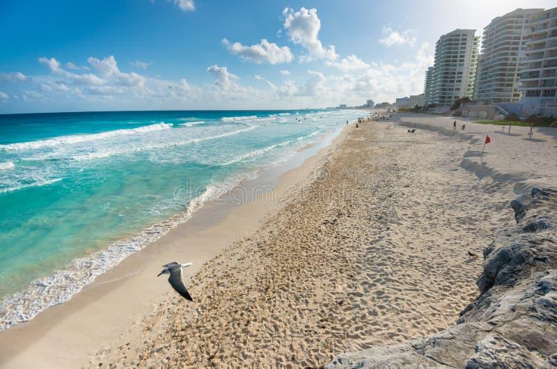 长的沙子坎昆海滩在墨西哥 库存照片