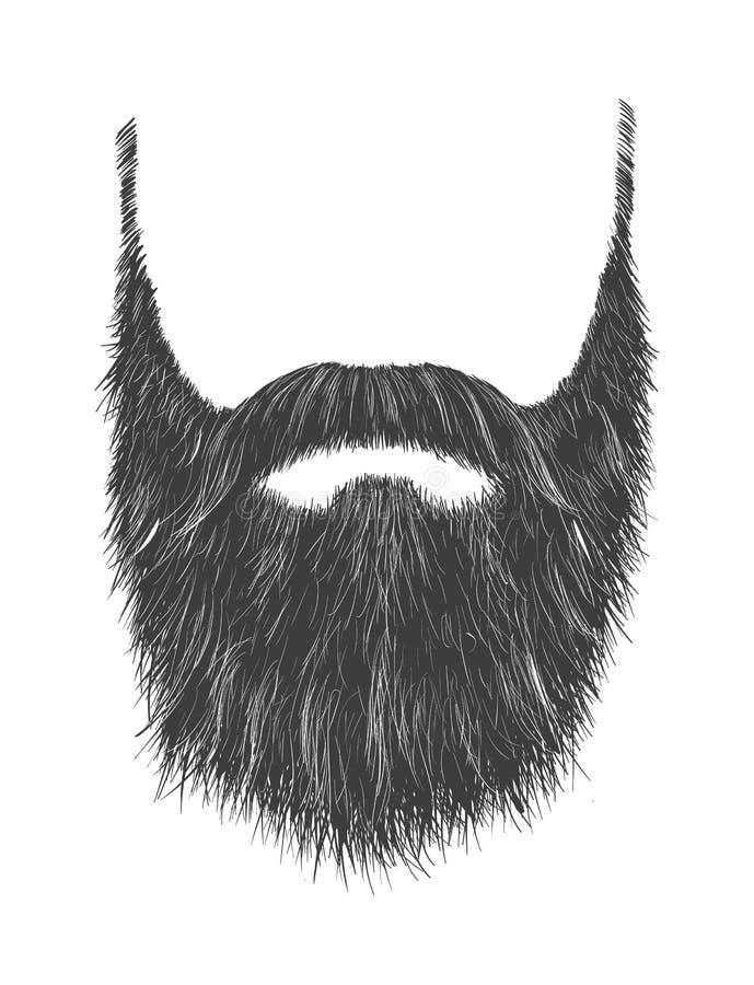 长的灰色胡子 库存例证
