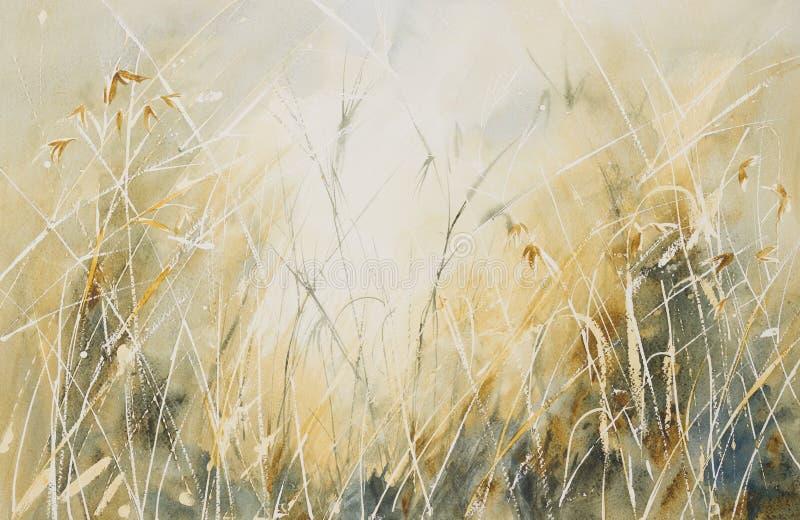 长的草在草甸 皇族释放例证
