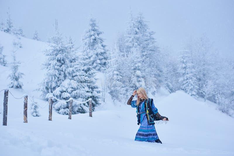 长的蓝色礼服的,被绣的温暖的无袖的毛皮大衣可爱的白肤金发的女孩室外在深雪 库存图片