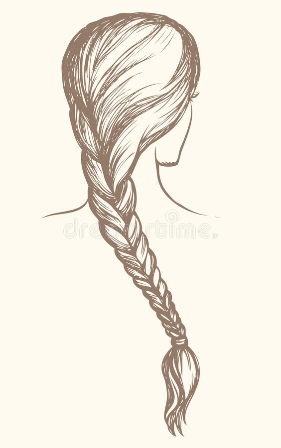 长的辫子 得出花卉草向量的背景 皇族释放例证