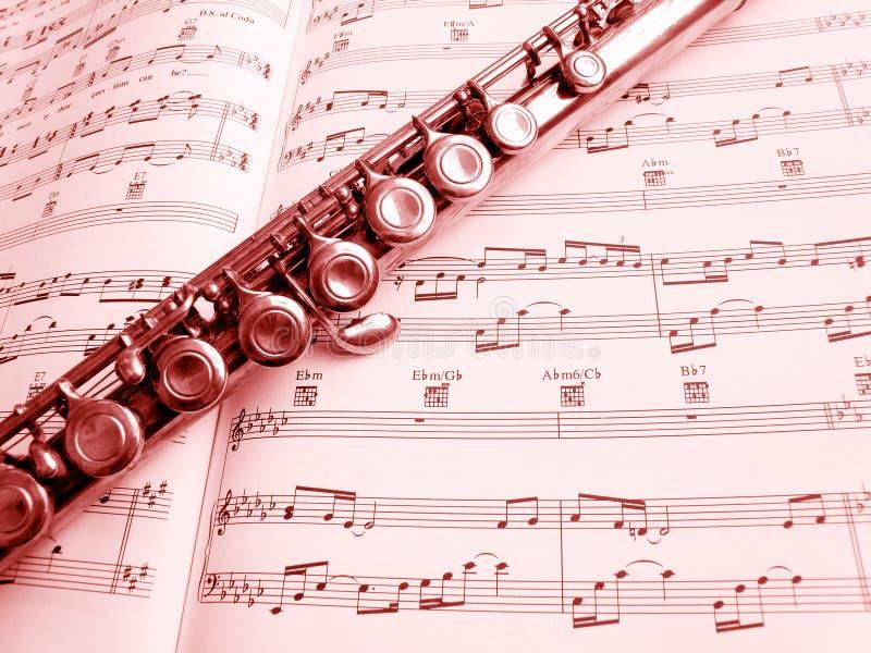 长笛仪器乐谱 免版税库存图片