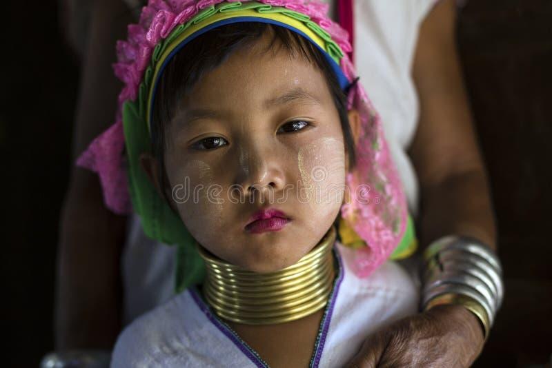 长脖子妇女,缅甸 库存图片