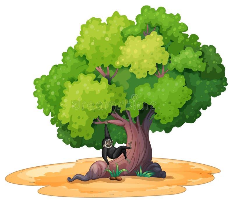 长臂猿和树 库存例证