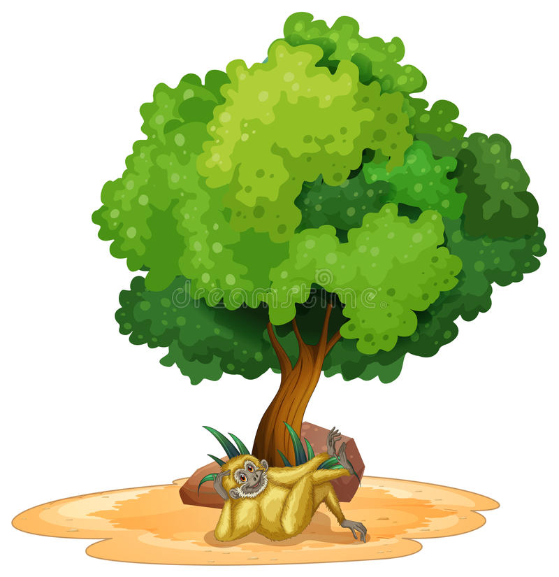 长臂猿和树 向量例证