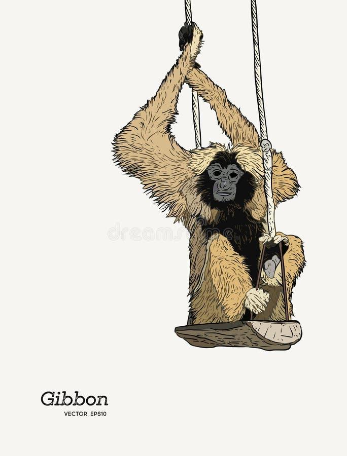 长臂猿猴子剪影向量图形图画 向量例证