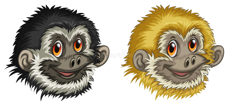 长臂猿面孔 向量例证