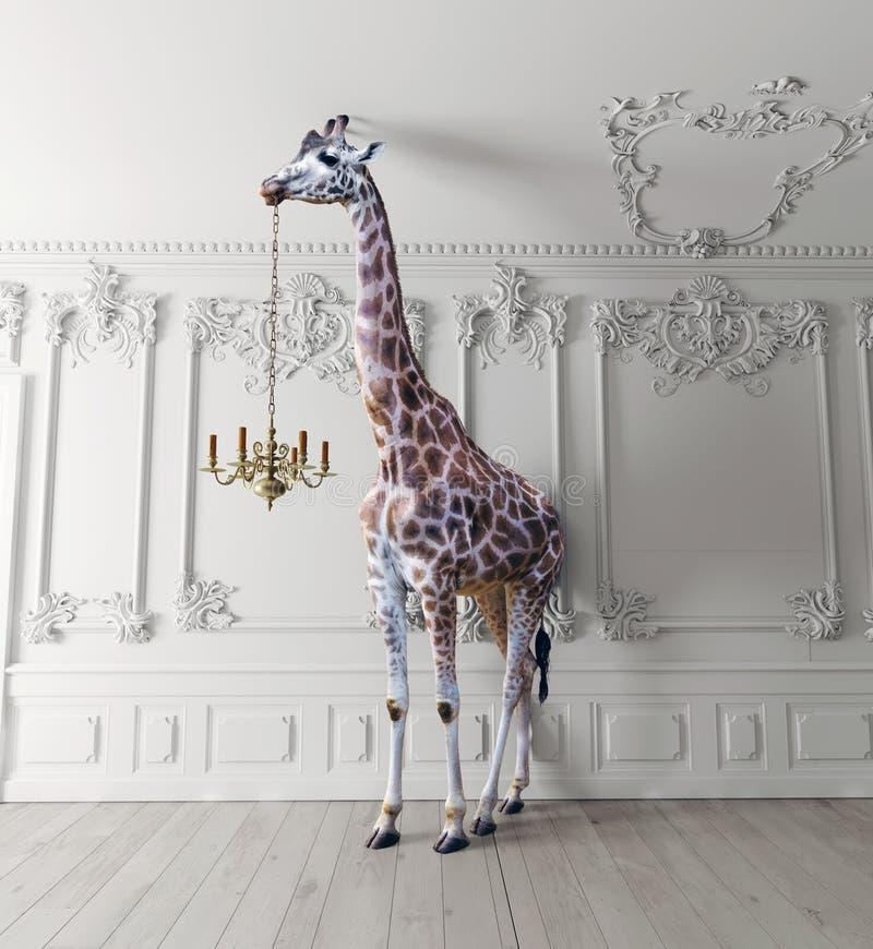 长颈鹿举行枝形吊灯 向量例证