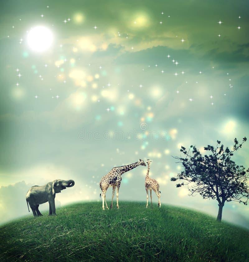 长颈鹿和大象在小山顶 库存照片