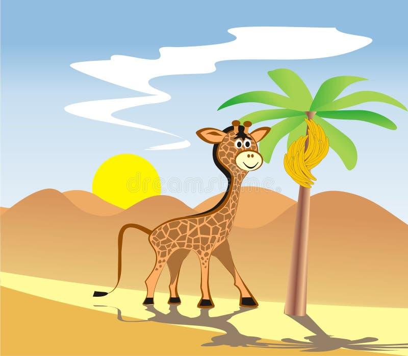 长颈鹿在非洲