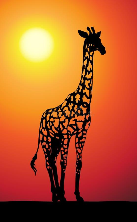 长颈鹿日落