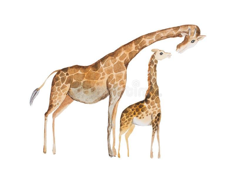 长颈鹿母亲和婴孩的水彩例证 向量例证