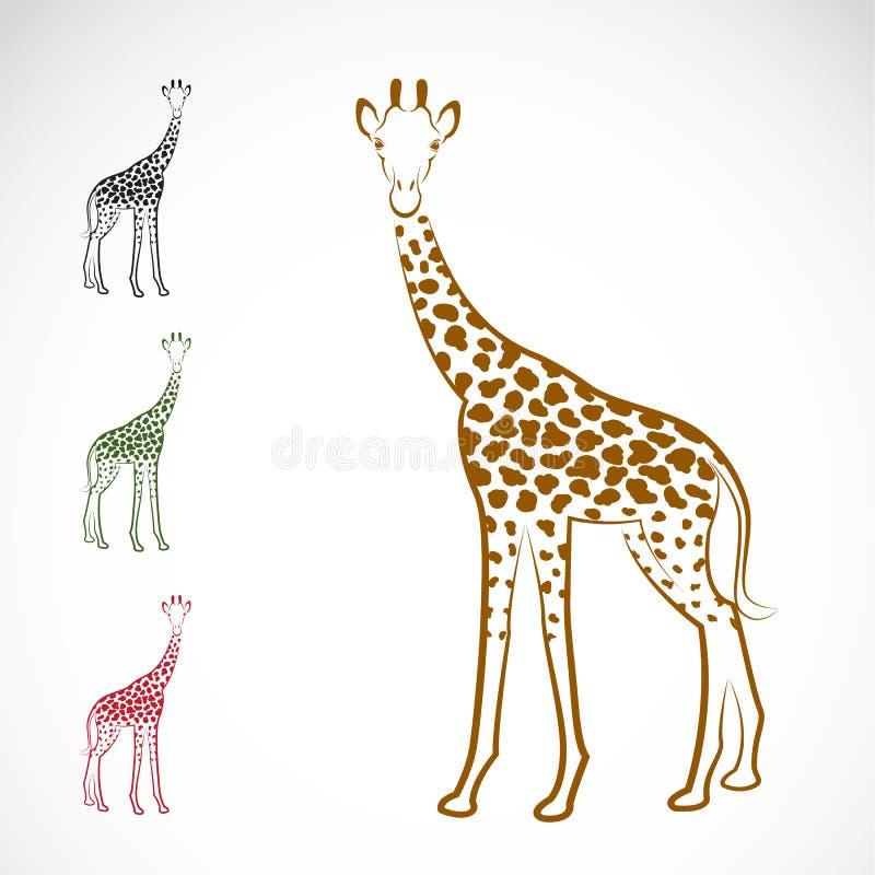 长颈鹿的传染媒介图象 皇族释放例证