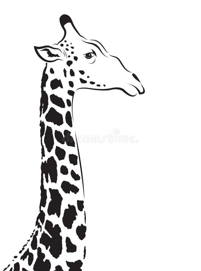 长颈鹿头的传染媒介图象 皇族释放例证