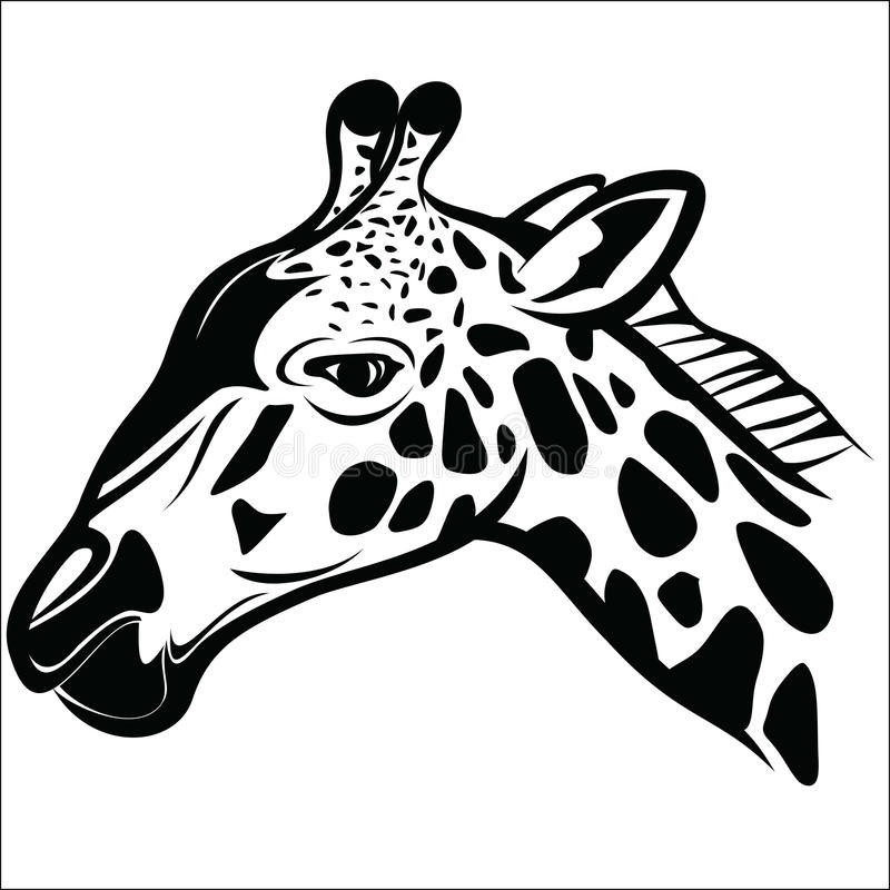 长颈鹿头1 向量例证