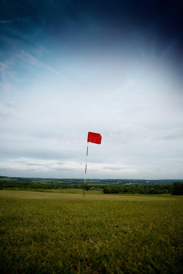 长高尔夫球的漏洞 库存图片