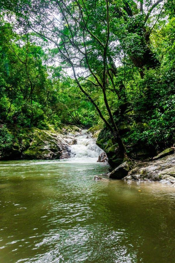 门卡瀑布的美好的室外看法,圣玛尔塔,哥伦比亚 免版税库存照片