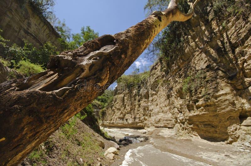 门峡谷地狱国家公园s 库存图片