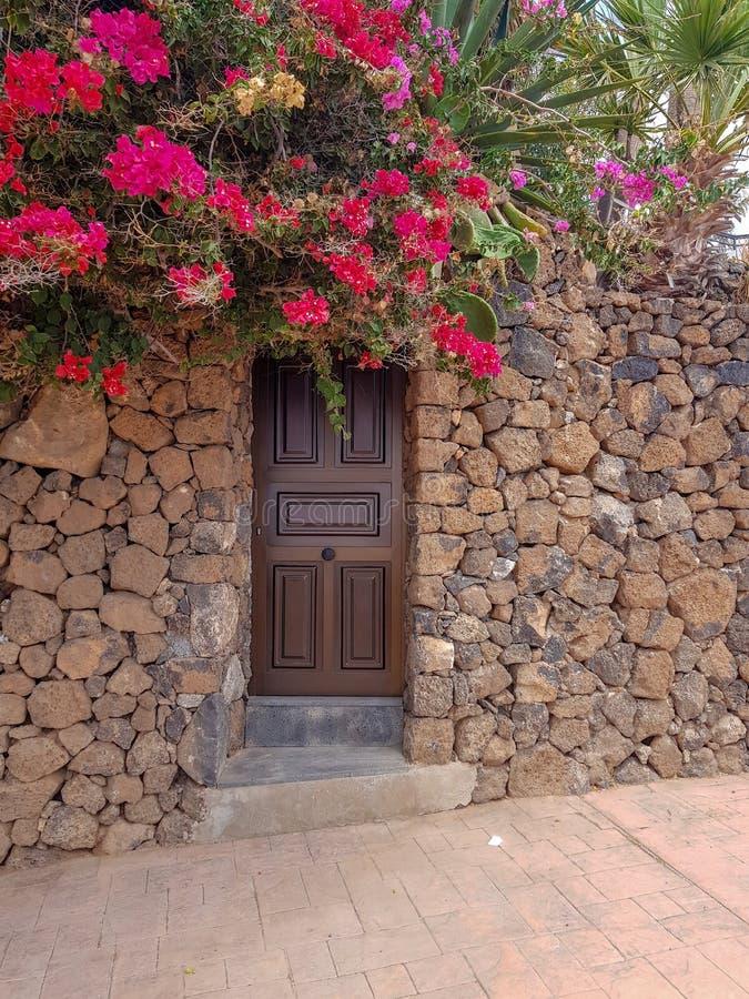 门细节在海岸典型的房子里在加那利群岛和它的植被的 r 免版税库存照片