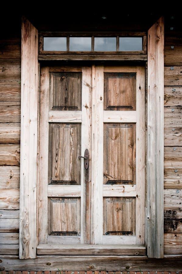 门老木 库存照片