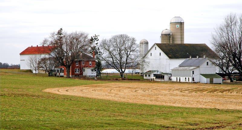 门诺派中的严紧派的农场 免版税库存照片