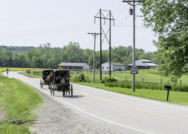 门诺派中的严紧派的马和儿童车在农村俄亥俄 图库摄影
