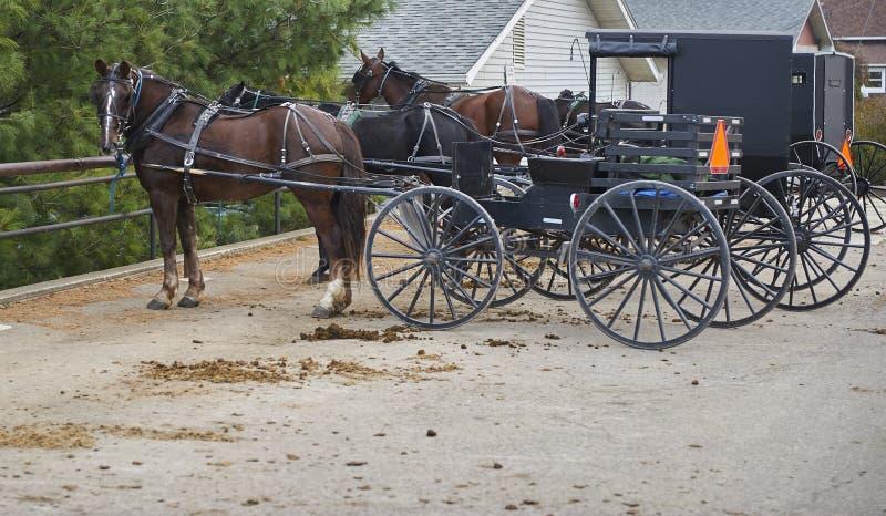 门诺派中的严紧派的马和儿童车 图库摄影