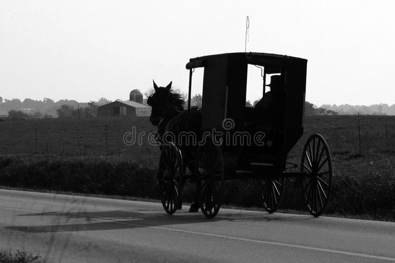 门诺派中的严紧派的儿童车和马 库存照片