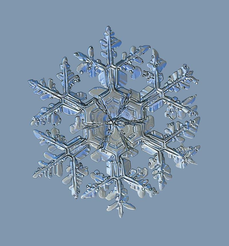 闪烁在蓝色背景的雪花 库存例证