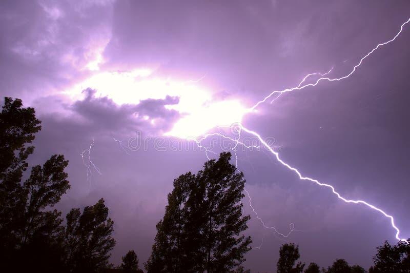Download 闪电 库存图片. 图片 包括有 放电, 天气, 风暴, 静态, 螺栓, 天空, 本质, 闪电, 紫色, 结构树 - 185311