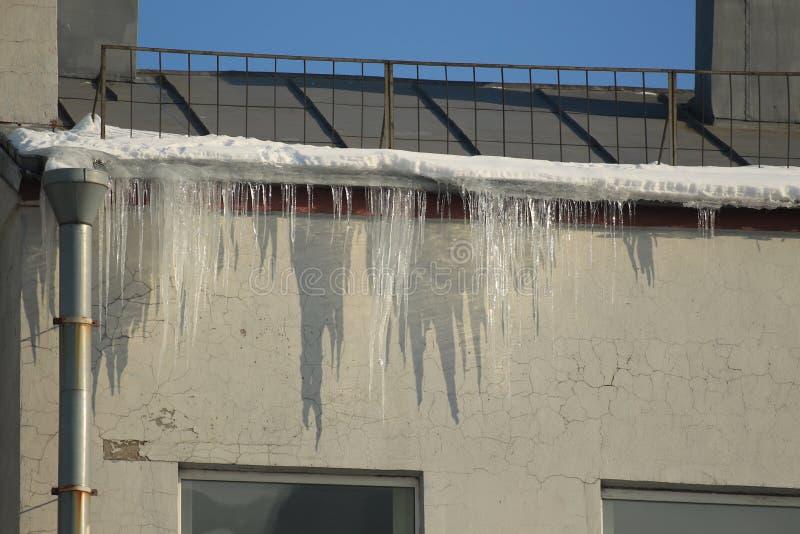 闪耀的冰柱在阳光下,垂悬从屋顶 库存图片