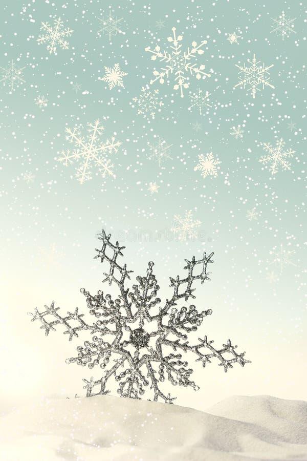 闪耀雪的雪花 图库摄影