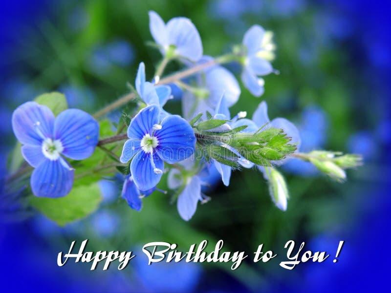 问候-生日快乐-与蓝色花 库存图片