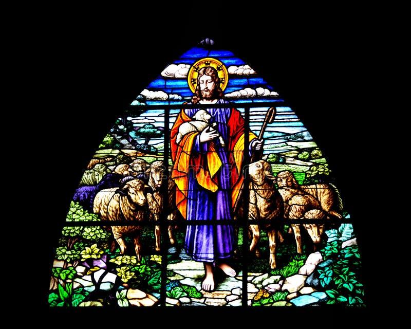 阁下我的牧羊人 库存图片
