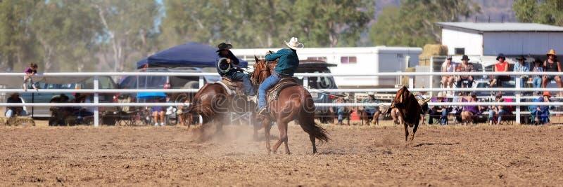 队在国家圈地的小牛绕绳竞争 免版税库存图片
