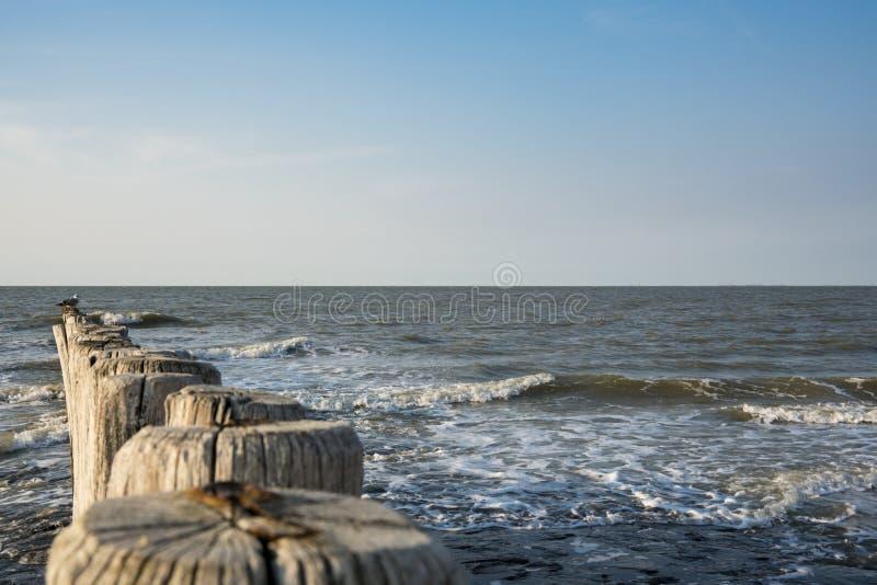 防堤在北海,Cadzand坏,荷兰 文本的空间 免版税库存照片