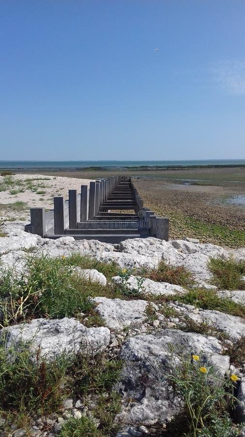 防堤处于低潮中 免版税图库摄影
