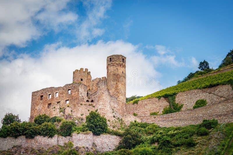 防御废墟Ehrenfels在Assmannshausen在莱茵河 免版税库存图片