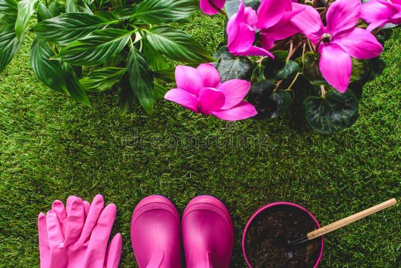 防护手套、胶靴、花盆有手犁耙的和花顶视图在草 免版税库存照片