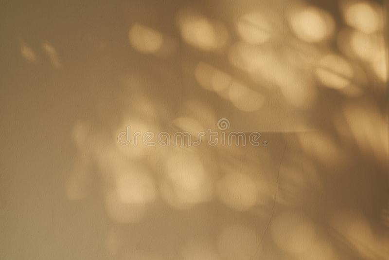 阳光和阴影背景在墙壁上 免版税图库摄影